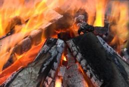 Polttopuu pölkky halko kalikka klapi pilke hake puumurske puubriketti puupelletti metsätähde – puupolttoaineet
